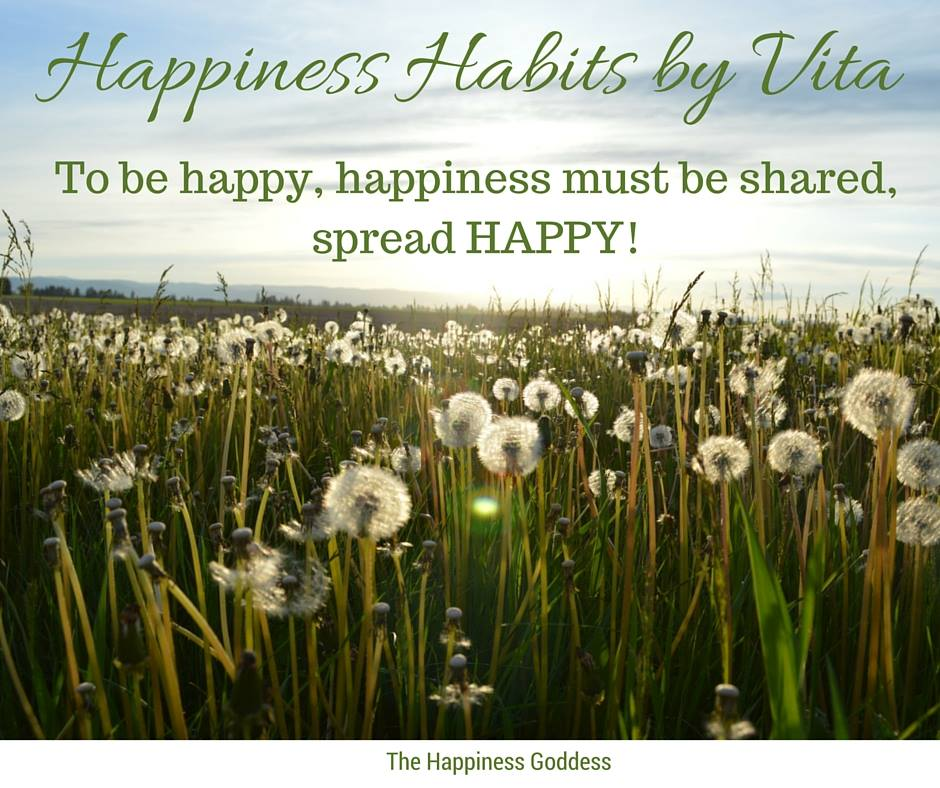 Happiness & Wellness Coaching